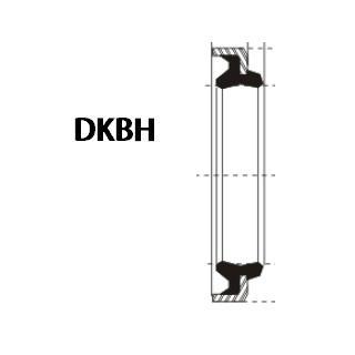 液压防尘 DKBH型 丁腈橡胶+金属环 密封圈 1