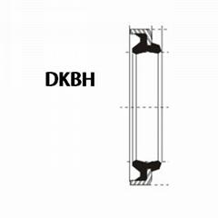 液压防尘 DKBH型 丁腈橡胶+金属环 密封圈