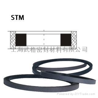 活塞(孔)用STM型 聚四氟乙烯+丁腈橡胶 密封圈 1