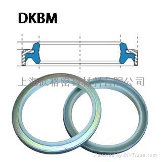 液壓防塵 DKBM型  聚氨酯+金屬環 密封圈 1