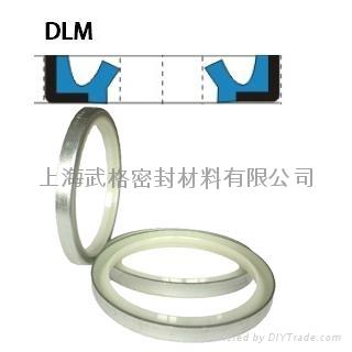液压防尘DLM型 聚氨酯+金属环 1
