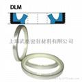液壓防塵DLM型 聚氨酯+金屬