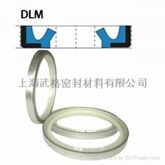 液壓防塵DLM型 聚氨酯+金屬環