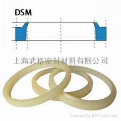 液压防尘DSM型 聚氨酯 密封圈