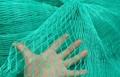 bird nets 2