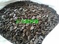 古馬隆樹脂 2