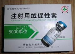 HCG 5000iu human chorion