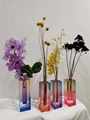 new style grade dyed colored acrylic  vase