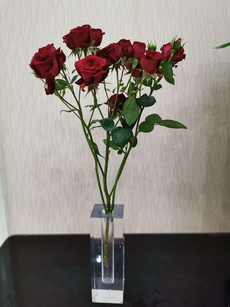 acrylic vase,glass vase ,plexiglass vase 5