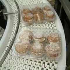 食品網帶輸送機