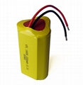 18650 Lithium Ion Battery Pack with 1800mAh Nominal Capacity  5