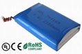 Lithium Polymer Battery pack with