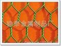 優質不鏽鋼304六角網擰花網石