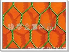 304Hexagonal wire mesh