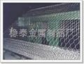 304Hexagonal wire mesh 4