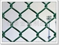 1/2Chain Link Fence