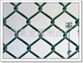 pvc優質勾花網荷蘭網