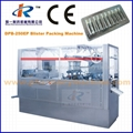 DPB-250P Flat Plate Automatic Blister Packing Machine with Plexiglas Cover