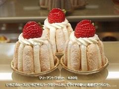 Ice-Cream Emulsifier