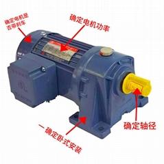 台湾TL东力卧式齿轮减速电机机 PL22