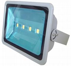 200W LED Flood Light with Lextar LED Mean Well Power
