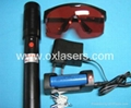 400mw 532nm green laser pointer/high powered laser pointer/ free shipping