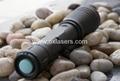 200mw handheld burning waterproof green laser pointer +adjustable lens+free ship 5