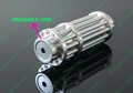 Newest 200mw waterproof focusable burning green laser pointer  free shipping