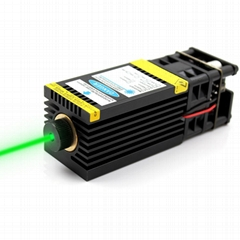 520nm 1W Green Laser Module 12V Focusable DIY 1000mW Laser Bird Repellent  (Hot Product - 1*)