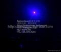 50mw Blue Purple Laser  pointer/UV aser pen/star pointer Free Shipping 3