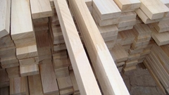 paulownia square wood