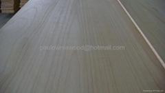 paulownia edge glued panels