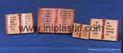 樹脂膠聖經|塑料書本|塑膠書本配玩具書