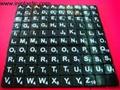 6)供应黑底白字的英文字母拼块拼字游戏