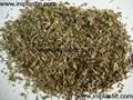 加拿大进口猫薄荷|猫草|薄荷草|美国猫薄荷 3
