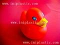 情侶鴨|情侶男鴨|女鴨|男女鴨|男孩鴨|金鴨 16