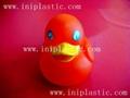 lover duck golden duck gold duck girl duck man duck woman