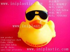 戴墨镜鸭子戴眼镜鸭子墨镜浮水鸭子
