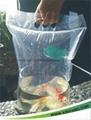 魚苗袋  3
