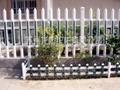 苏州PVC塑钢护栏 3
