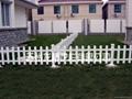 上海PVC草坪护栏 3