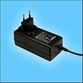 24W Series Wall mount Switching AC/DC Adapters  (GS plug)