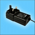 24W Series Wall mount Switching AC/DC