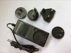 销售20V1.2A可换头开关电源