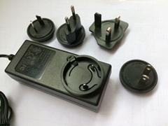 销售20V1.2A可换头开关电
