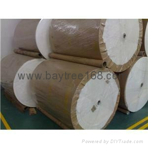 Heat Sealable Filter Paper for Tea Bag 4