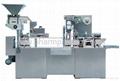 DPP250A/250D AL/PL Blister Packing Machine