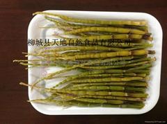 廣西重陽筍