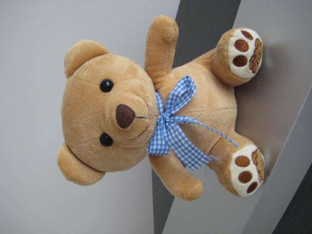 毛绒小熊 4