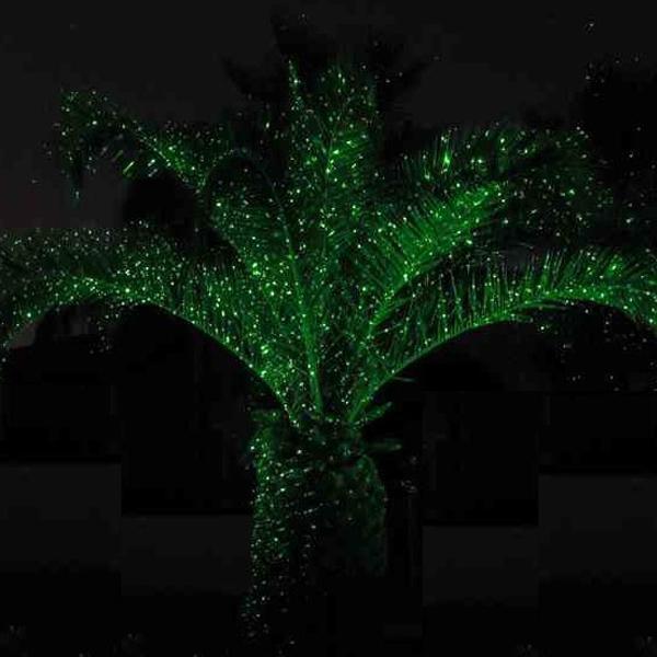 Stationary Green Firefly Outdoor Christmas Laser Lighting